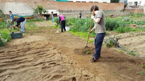 Preparant la terra per plantar.